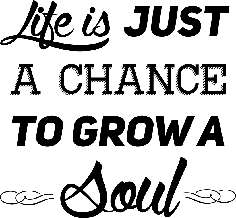 Life is just a chance to grow a soul